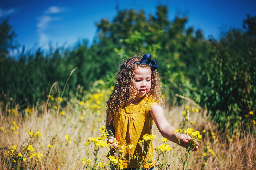 Little girl in long grass on sunny day Essex UK Natural Documentary Portrait Photographer