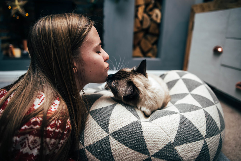 Teen girl kisses ragdoll cat Essex UK Wedding Documentary Photographer