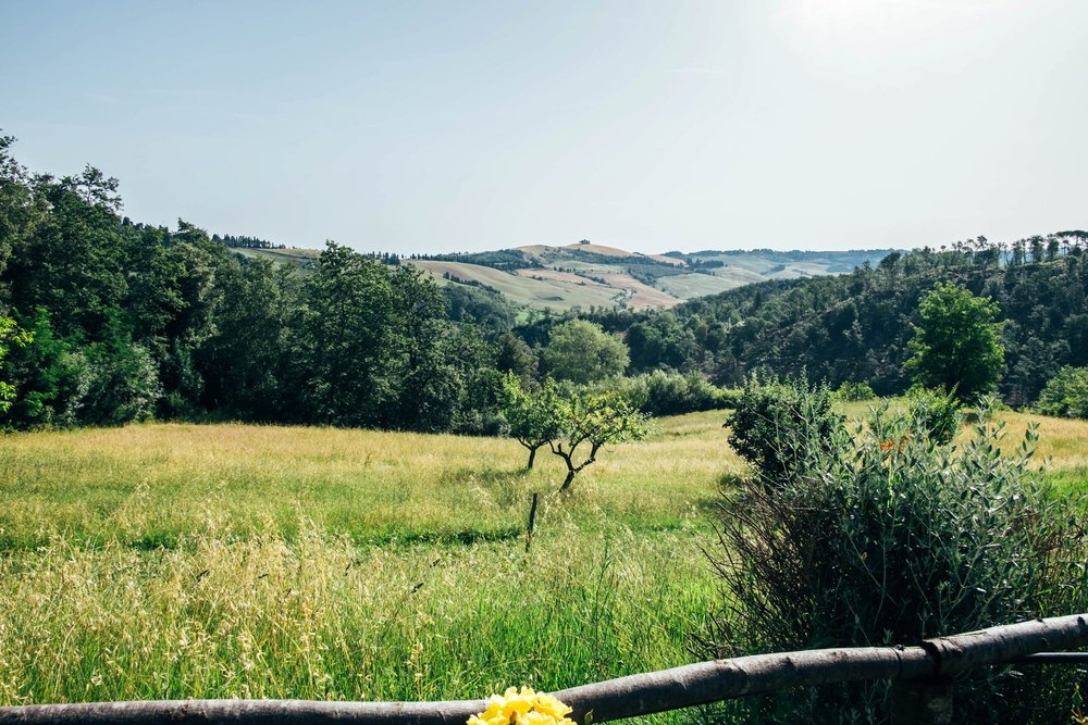 Tuscan countryside Essex Documentary Wedding Travel Family Photographer