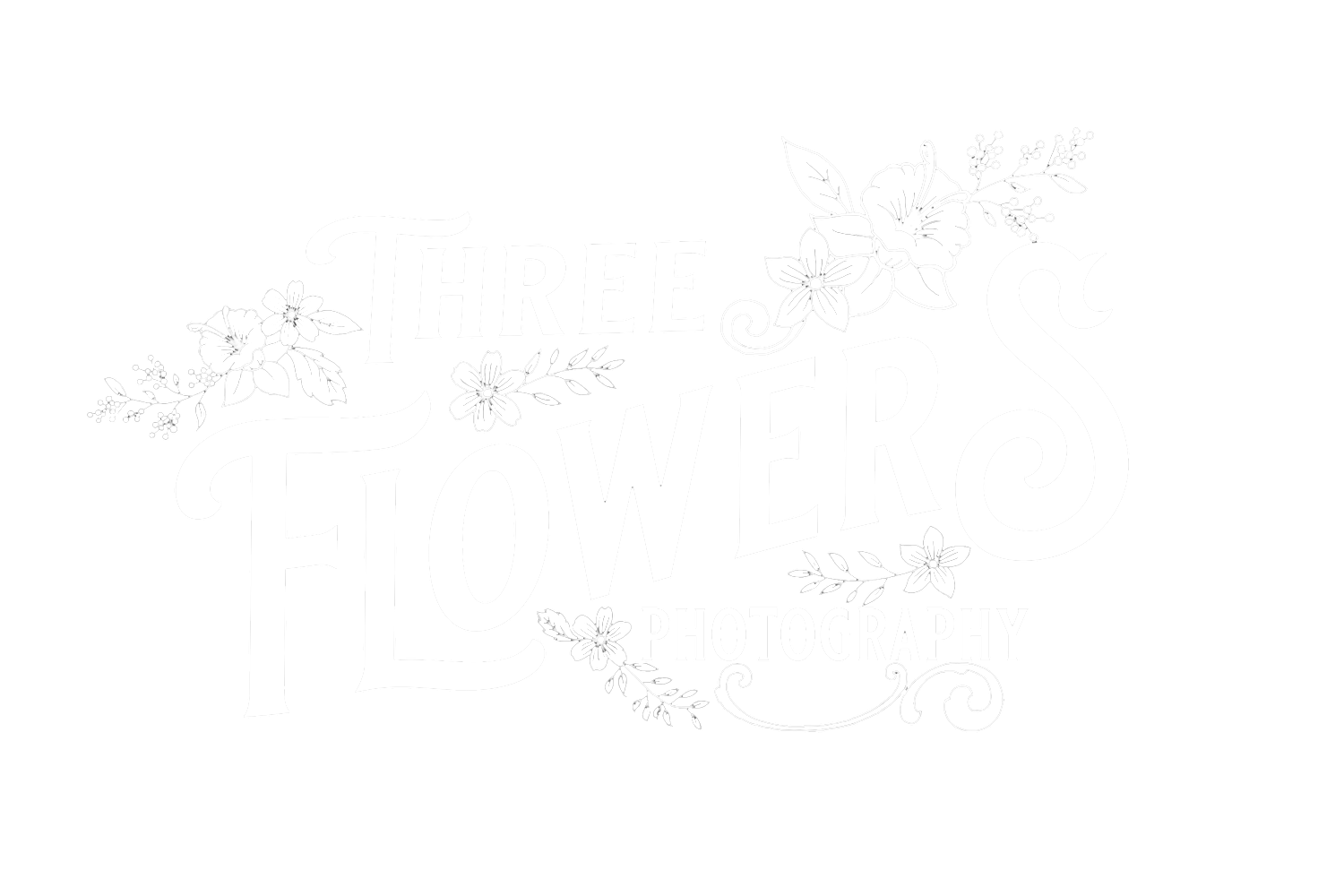 Three Flowers Photography