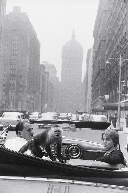 Winogrand_Park_Ave_NY_1959_sm.jpg