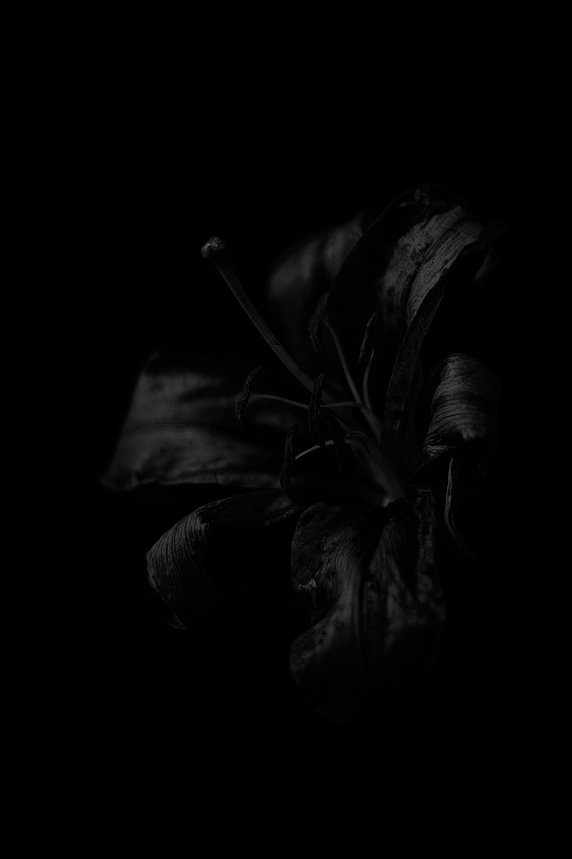 Black is not sad. Black is poetic.