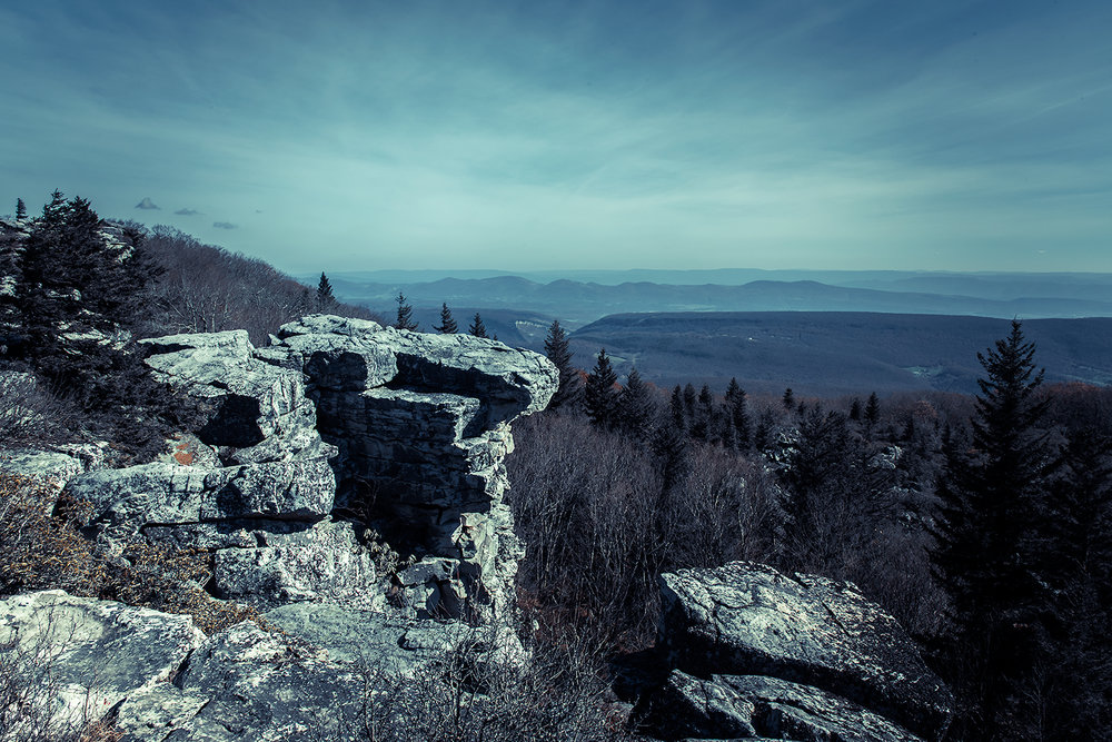 _DSC2809-dolly-sods-road-false-coloring-forest-mountains-1000.jpg