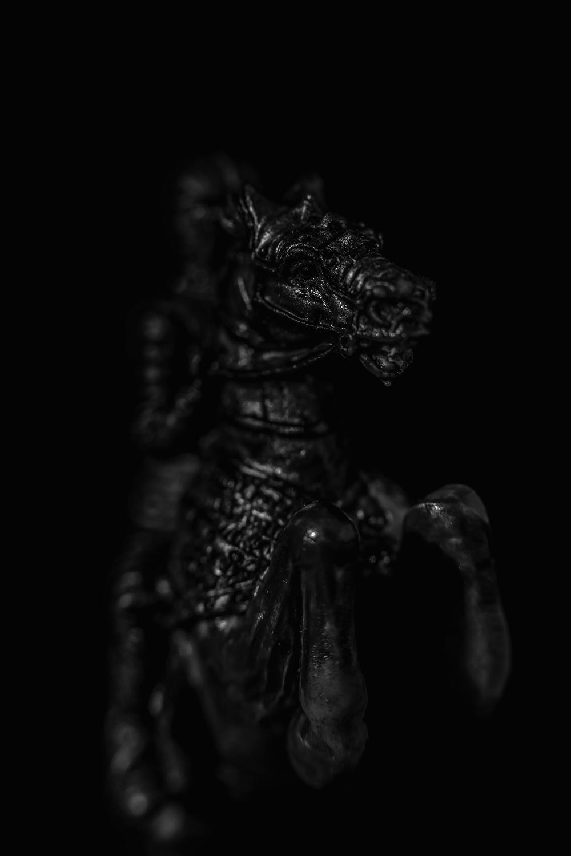 _DSC5998-chess-horse-1000.jpg