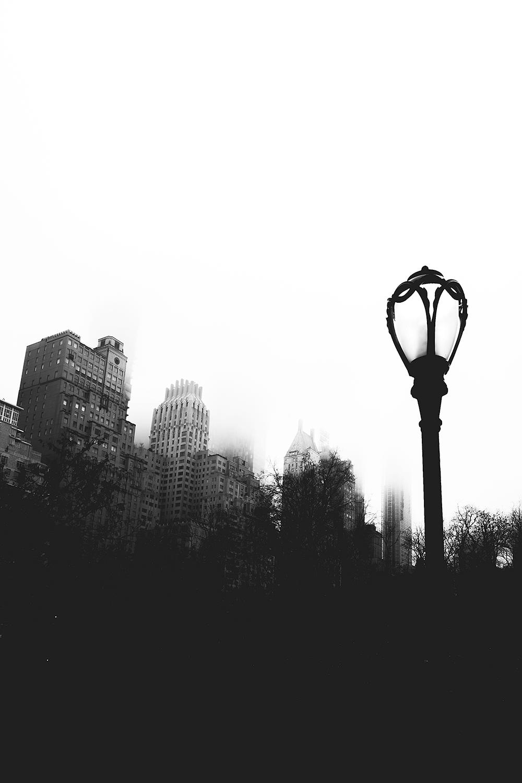 _DSC2507-new-york-2018-1000.jpg
