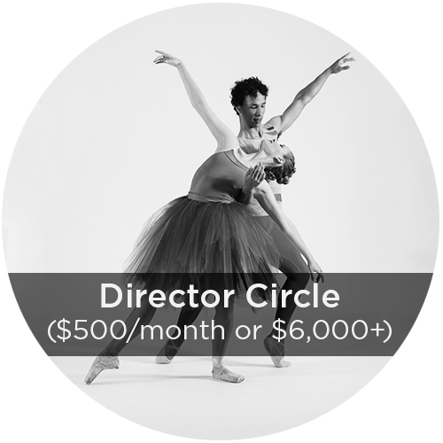 director-donation-circles.png