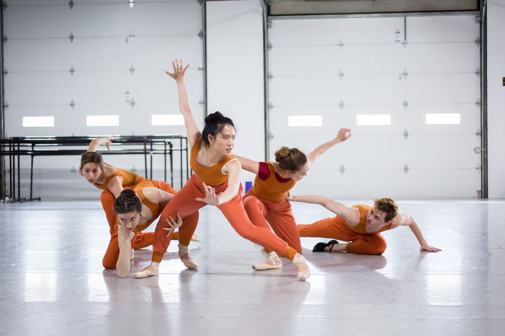 Ballet 5:8's  4501