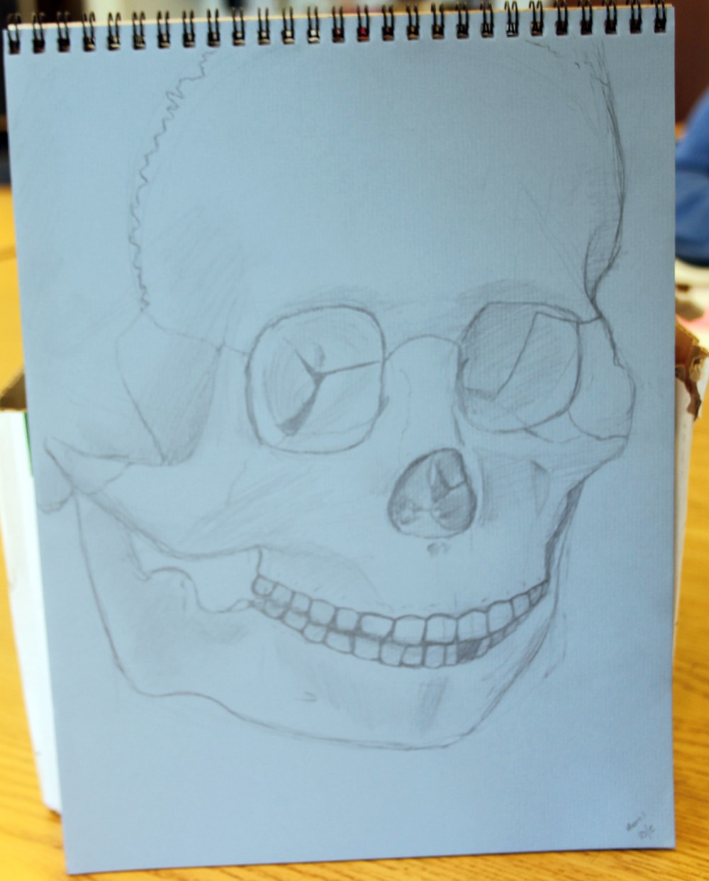 high school skeleton drawing.jpg