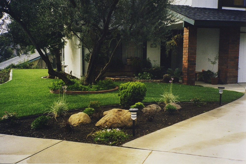 Small Front Yard 2.jpg