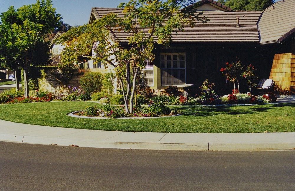 Corner Front Yard.jpg