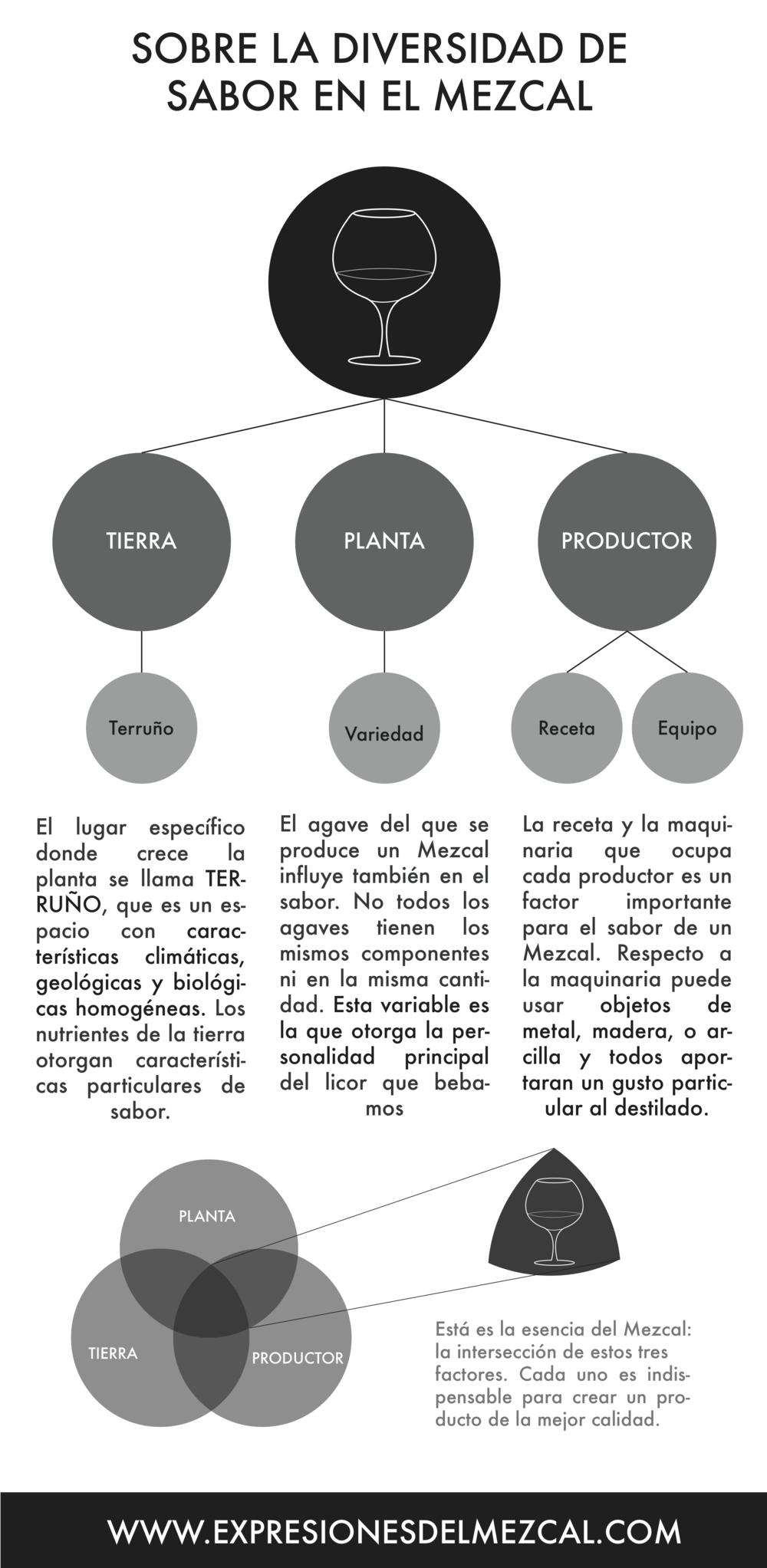Infografía sobre los sabores del Mezcal