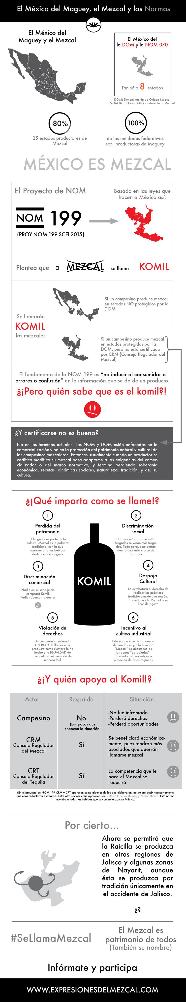 infografia nom 199