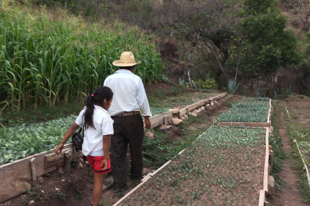 Productor de mezcal agroecológico en la mixteca alta