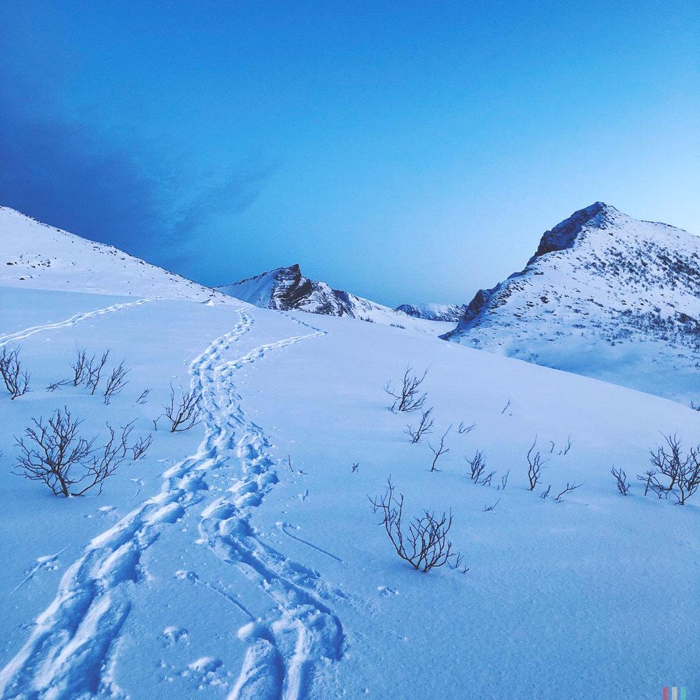 norwegen-senja-wandern-spuren.jpg