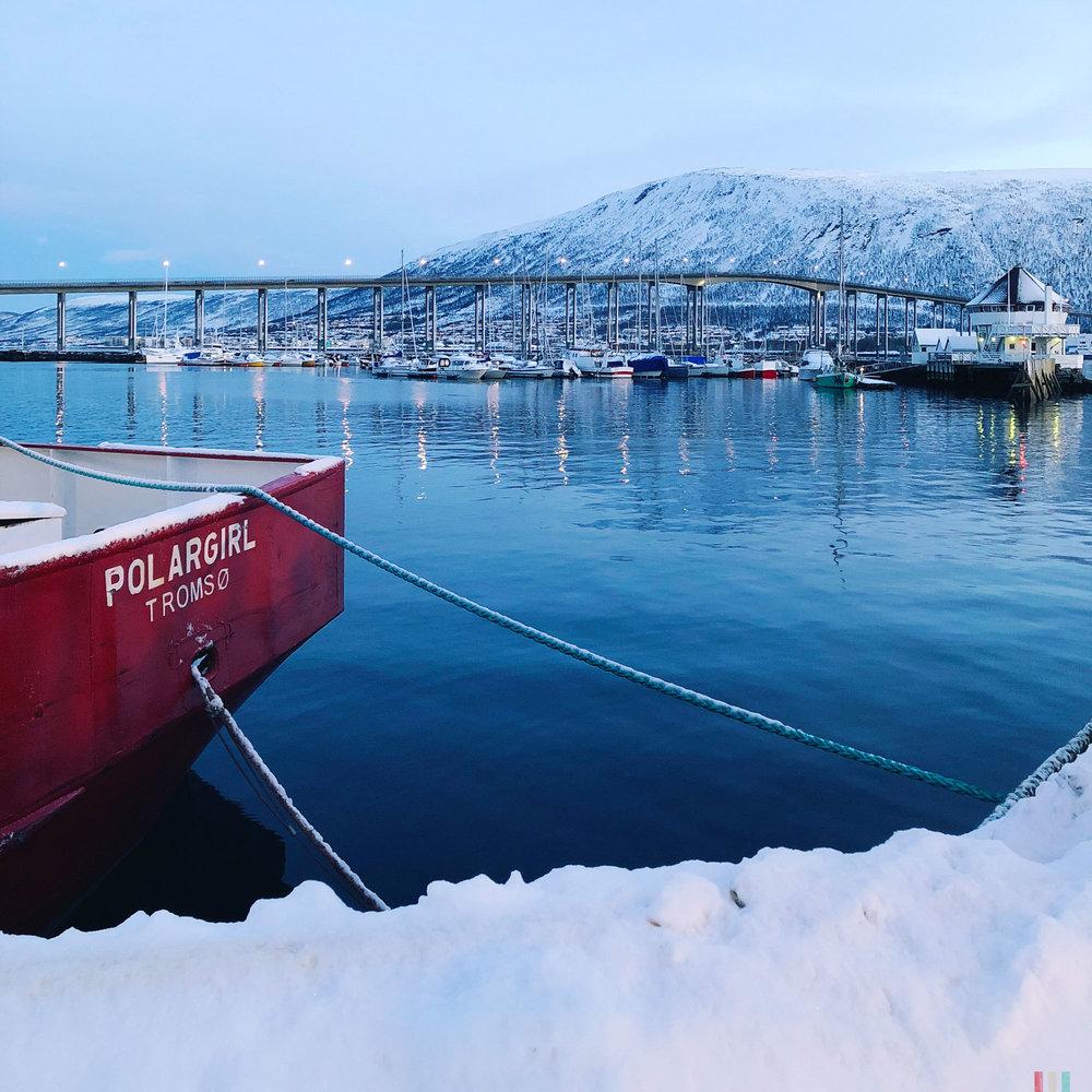 norwegen-tromso-hafen-polargirl.jpg