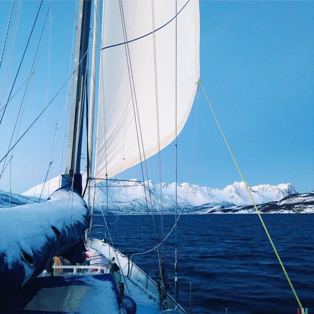 norwegen-tromso-segeltour-blick-vom-heck.jpg