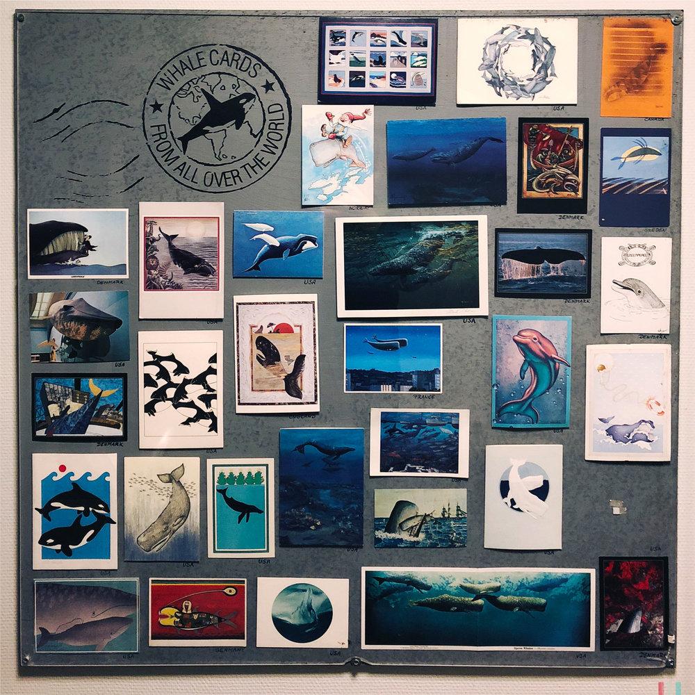 norwegen-andenes-postkarten-im-walmuseum.jpg