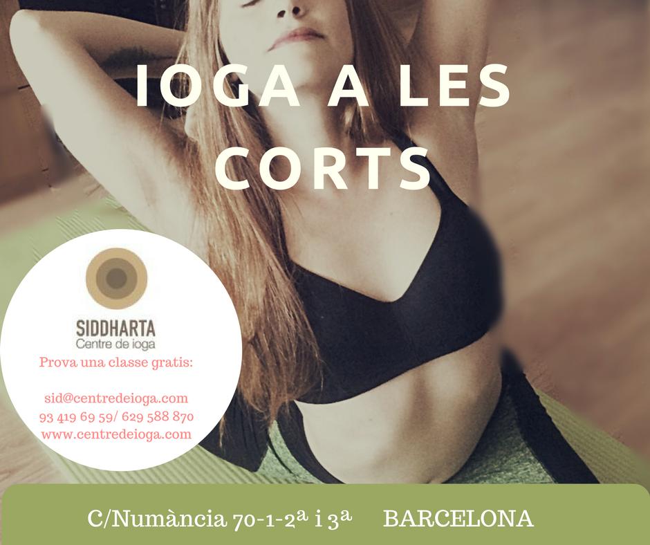 yoga-les corts.pngyoga