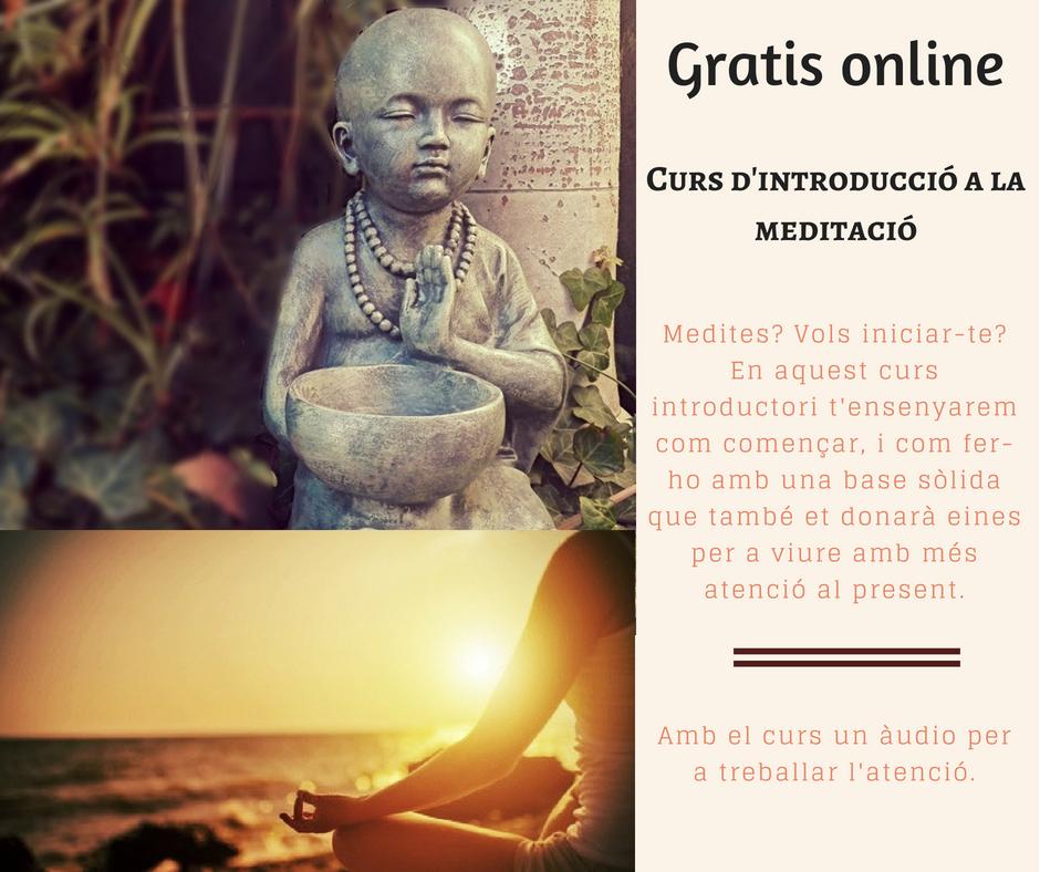 introducció meditació online.png