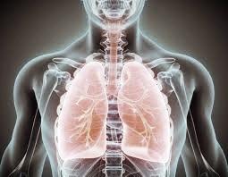 respiració-cursos.jpg