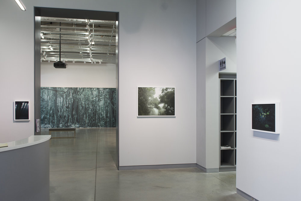 University Galleries Alice Hargrave: New Works Photographs, Photographic Fabric Walls, and Sound Installation