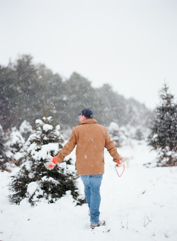 christmas-trees-wausau-wi-003.jpg