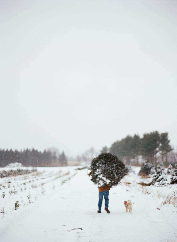 christmas-trees-wausau-wi-011.jpg