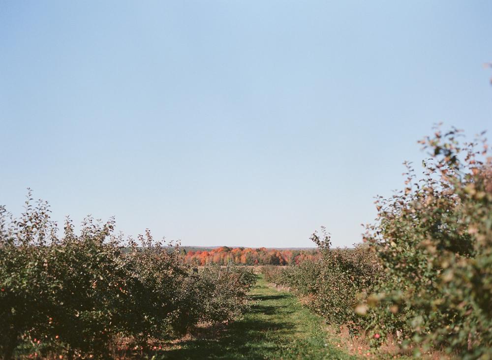 apple-picking-wausau-wi-004