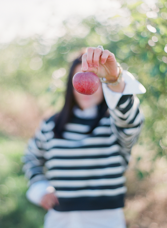 apple-picking-wausau-wi-011