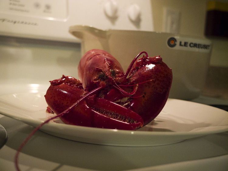 Lobster night at the McCartneys Photography,