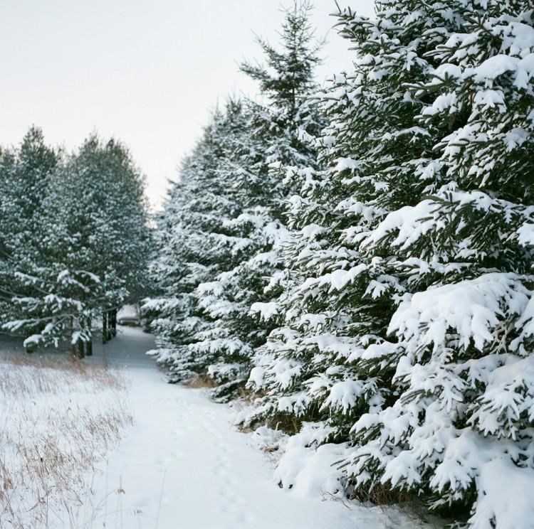 Door-County-Wisconsin-Winter-01
