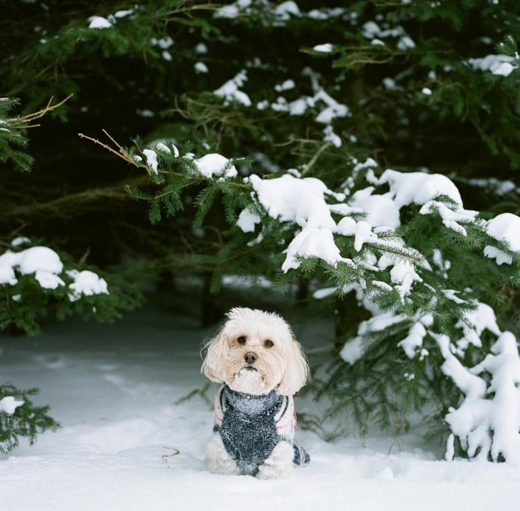 Door-County-Wisconsin-Winter-02