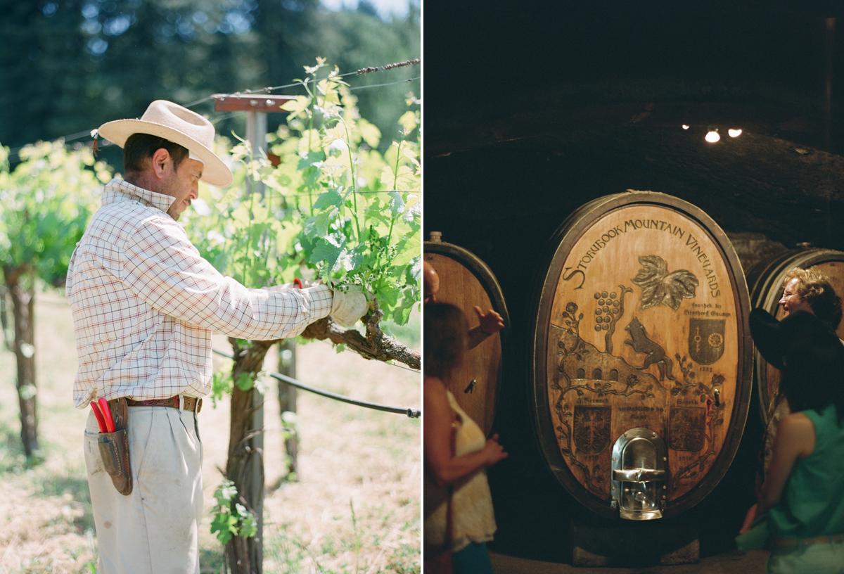 """""""Storybook mountain vineyard"""""""