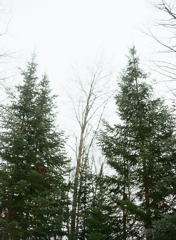 northern-wisconsin-snowshoe-010.jpg