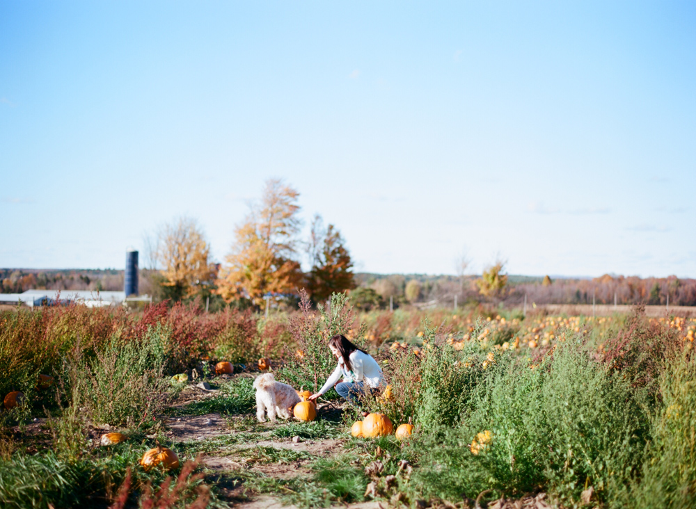 Wausau_WI_Pumpkin_Apple_Orchard_008.jpg