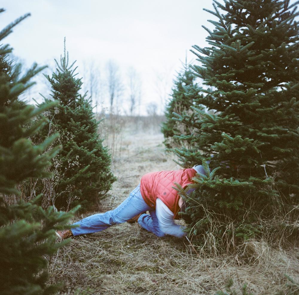 Christmas-Tree-005.jpg