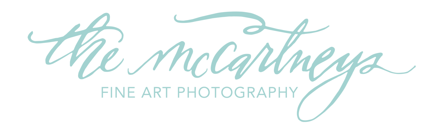 The McCartneys Photography | Wisconsin Wedding & Portrait Photographers