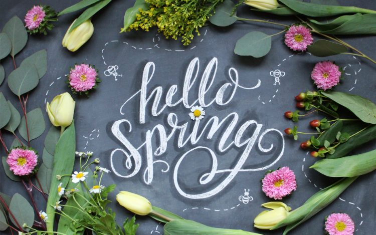 hello spring free wallpaper
