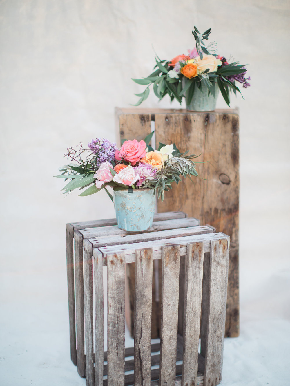 bloom flower arrangements