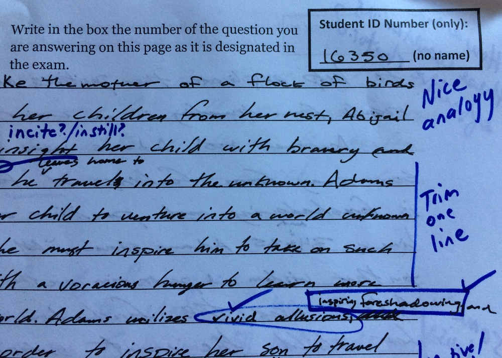 My AP English Language & Composition students list their ID numbers only when they write 40-minute timed essays in preparation for the AP exam in May. I annotate and score them, and only see their identities when I enter the grades into the gradebook.