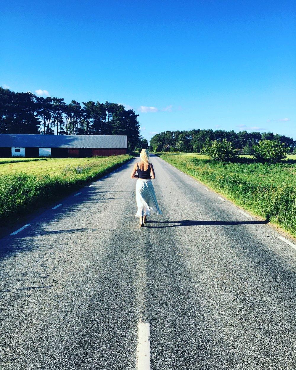 Road pic 3.JPG