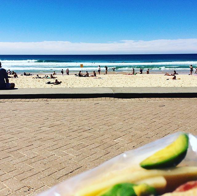 A V O C A D O // #manlybeach #australia #lunchtime #beach #sun #freelance #artistslife #sliceoflife #threemonthtransition
