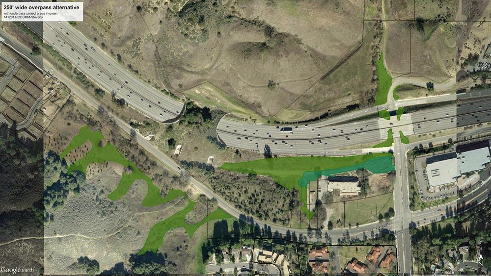 141201-250-ft-overpass-w-underpass-veg.jpg