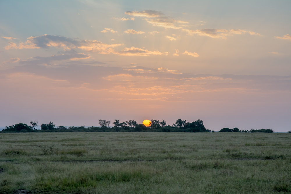 AFRICA-37.jpg