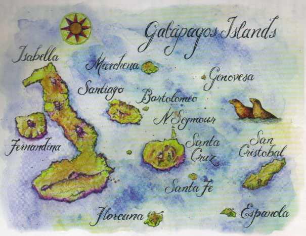 map63.jpg