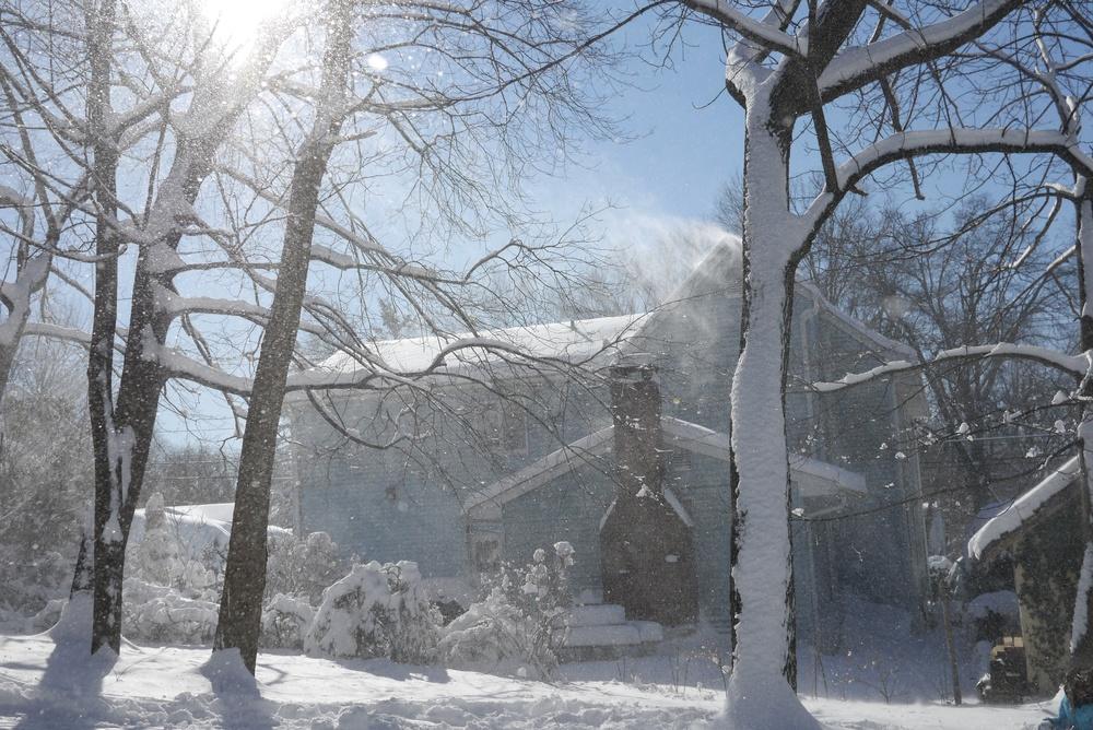 snowblizzard.jpg