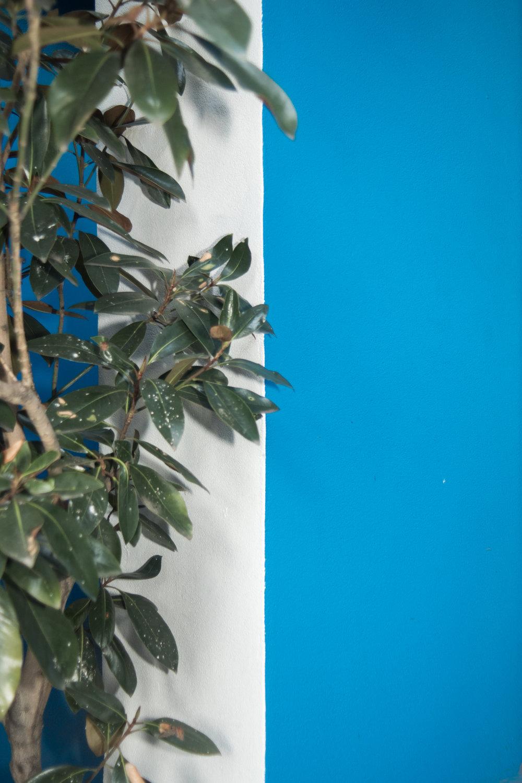 blue-2130.jpg
