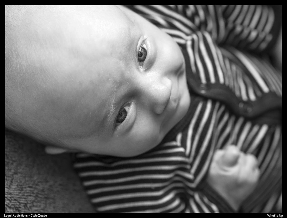 Liam+looks+up-.jpg