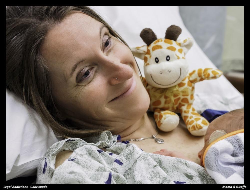 mama+and+giraffe-.jpg