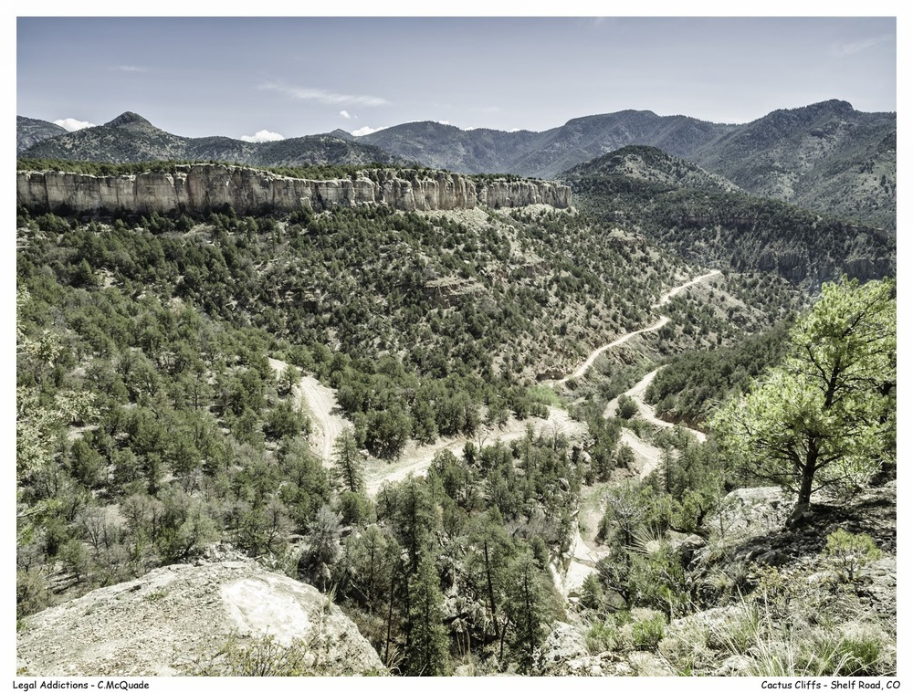 cactus+cliff-20142782.jpg